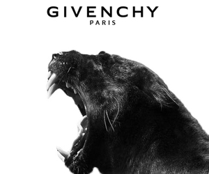 Givenchy and wallpaper image