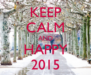 2015, happy, and calm image