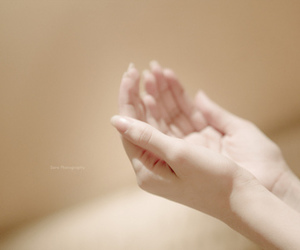 lluly, hand', and delicate' image