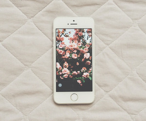 floral, iphone, and iphone 5s image