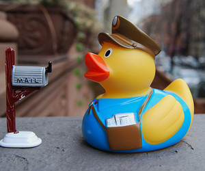 colour, duck, and mail image