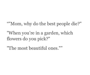 quotes, flowers, and die image