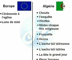 algerie and mdr image