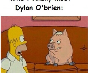 funny, fangirl, and dylan o'brien image