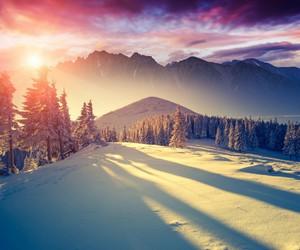 snow, winter, and sun image