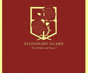 attack on titan, shingeki no kyojin, and stationary guard image