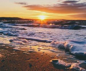 beach, sun, and nature image