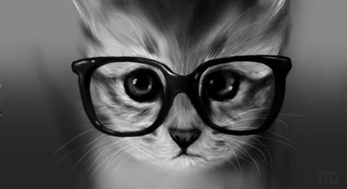 chaton and lunettes image