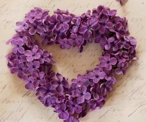 heart, flowers, and purple image