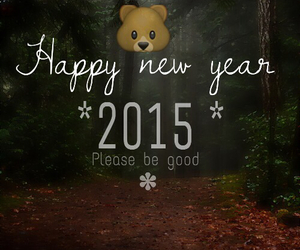 bear, happy new year, and new year image