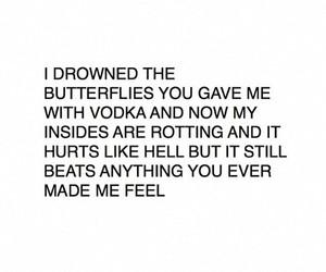 vodka, butterflies, and grunge image