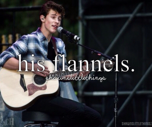 shawn mendes, magcon, and shawnslittlethings image