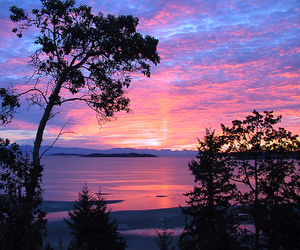 nature, sky, and pink night lovely image