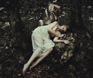 wolf, girl, and forest image