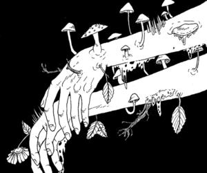 art, black and white, and mushroom image