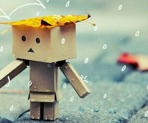 danbo, images, and rain image