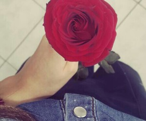 flower, rose, and jeans image