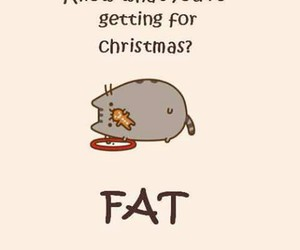 christmas, fat, and cat image