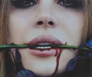 lana del rey, rose, and blood image