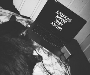 asylum, television, and bedroom image