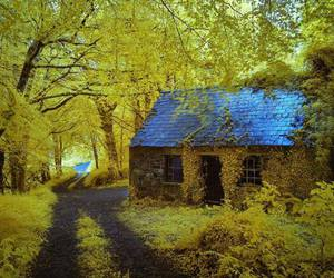 nature, house, and cottage image