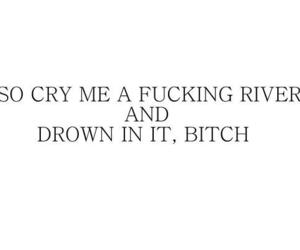bitch, cry, and quotes image