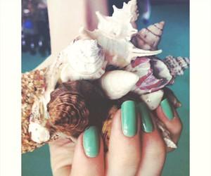 nails and sea shells image