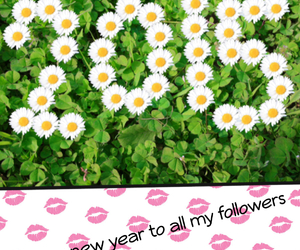 flowers, kisses, and new year image