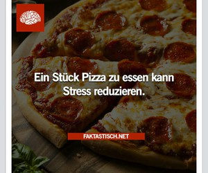 pizza, stress, and faktastisch image