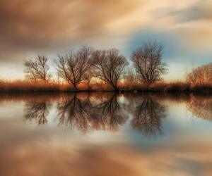 beautiful, nature, and serene image