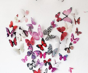 butterflies, pastel, and pretty image
