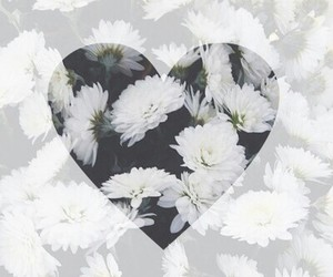 flowers, heart, and hipster image
