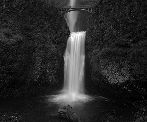 nature, black and white, and waterfall image