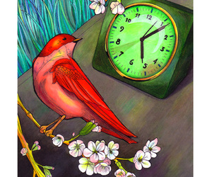 bird and time image