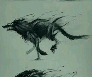 picture, wolf, and big bad wolves image