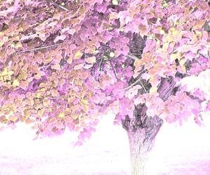 leaf, purple, and mauve image