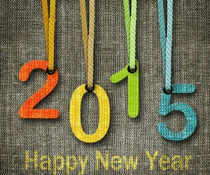 funny, happy new year, and 2015 image