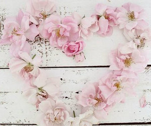 antique, heart, and pink roses image