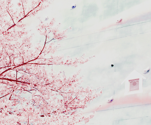 cherry blossoms, flowers, and inspirational image