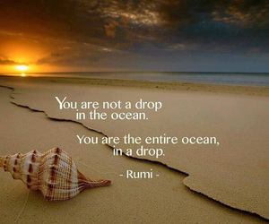 quote, ocean, and Rumi image