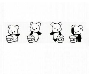 bear, black and white, and panda bear image