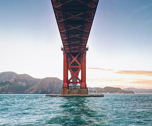 bridge, water, and sea image