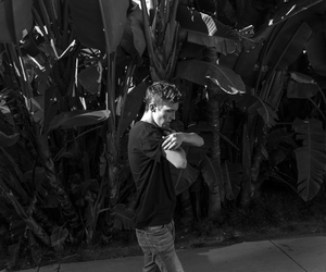 troye sivan, black and white, and youtube image