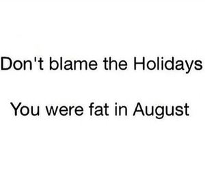 holiday, fat, and christmas image