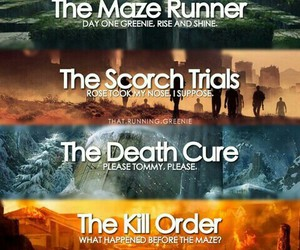 the maze runner, book, and the scorch trials image