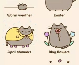 cat, spring, and pusheen image