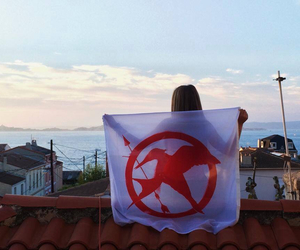 flag, roof top, and mockingjay image