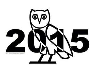 Drake, new years, and ovo image