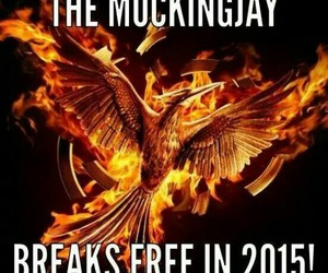 breaks, free, and hunger games image