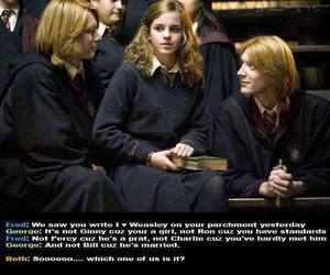 harry potter, weasley, and hermione image